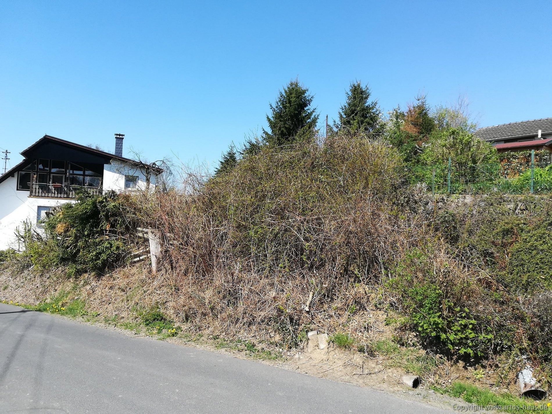 Grundstück vor dem Baubeginn